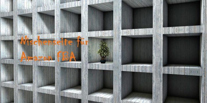 PNS#001 – Warum du eine Nischenseite für Amazon FBA brauchst